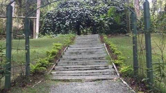 Garden of the Sleeping Giant: Stairway to giant swings