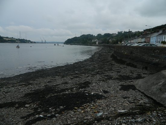 Monkstown, Ιρλανδία: This is how close the Bosun Restaurant is to the harbour.