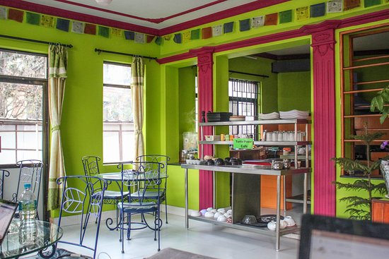 The Sparkling Turtle Backpackers Hostel Picture