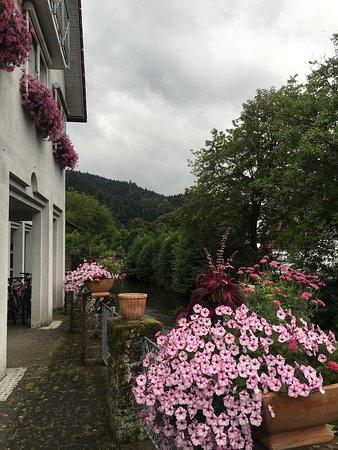 Schenkenzell, Alemania: photo2.jpg