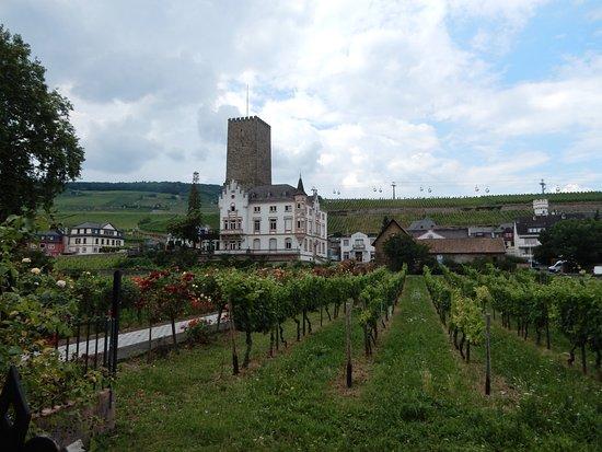 Historisches Weinhotel Zum Grünen Kranz: Rüdesheim met zicht op de wijngaarden en de kabelbaan.