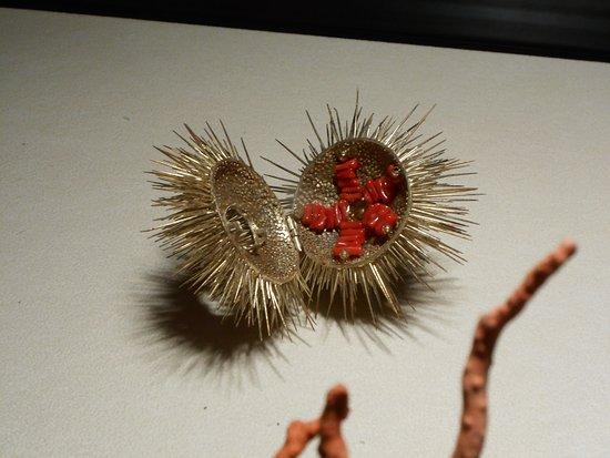 Foto de The Coral Museum