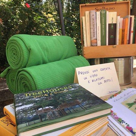 Molino del Piano, Italië: Prendi una coperta e un libro e rilassati nel prato mentre i bimbi giocano
