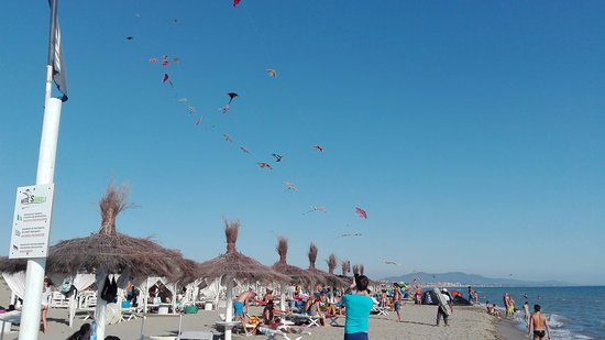 Spiaggia - Picture of Kite\'s Angels, Marina di Grosseto - TripAdvisor