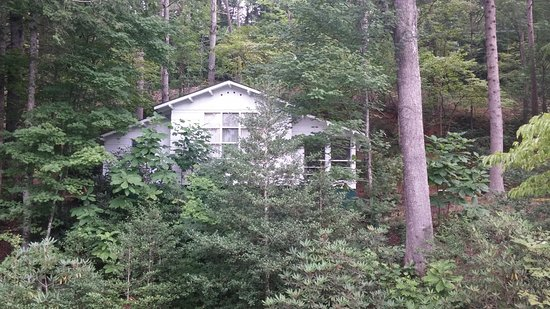 Buckhorn Inn: Little refuge in the woods - Cottage 1