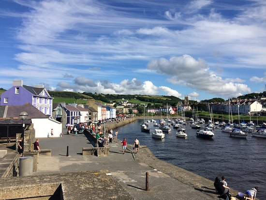 Harbourmaster Hotel: View of Aberaeron harbour with the Harbourmaster in lilac on the left