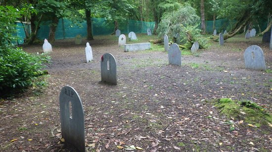 Killarney International Youth Hostel: Friedhof