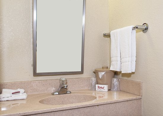 Red Roof Inn Tampa Brandon: Vanity