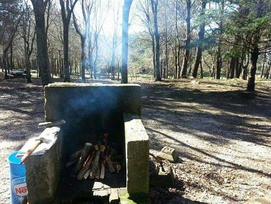 La Cabana Parque Forestal de Bembrive