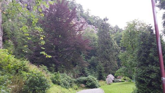 Ravnedalen Naturpark: 20160803_115745_large.jpg