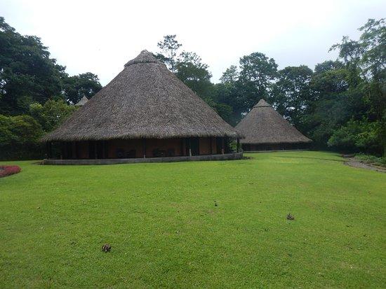 Sarapiquis Rainforest Lodge: Hotel rooms