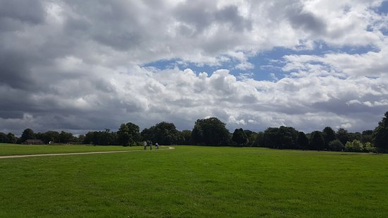 Astley Hall: 20160803_134149_large.jpg