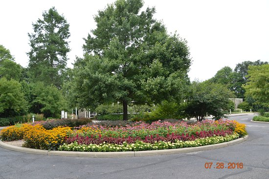 Canfield, OH: Flower Garden