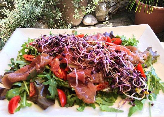 Piazza Ristorante Pizzeria: Tuna carpaccio on lettuce and rocket with red germ