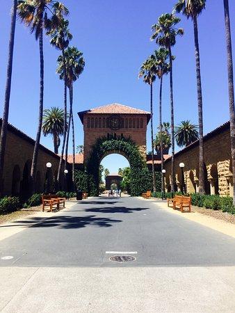 Palo Alto, Californië: photo7.jpg