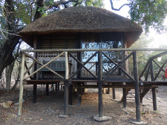 Marc's Treehouse Lodge: Notre cabane.