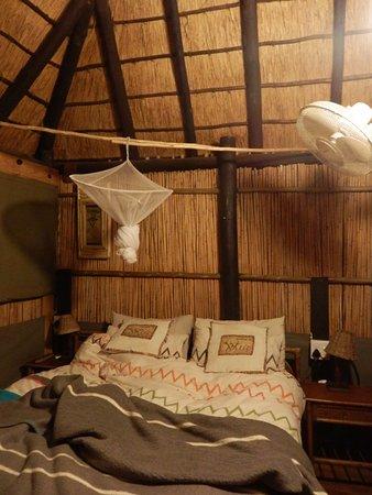 Marc's Treehouse Lodge: La chambre.