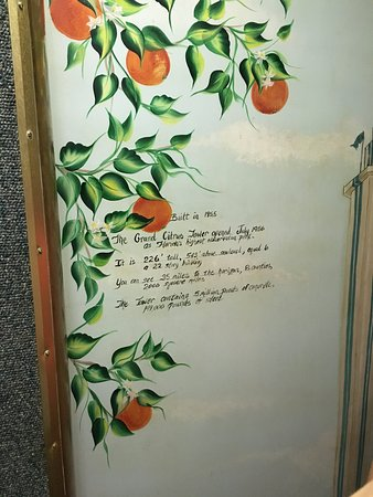 Florida Citrus Tower: Inside of the elevator door at the citrus tower