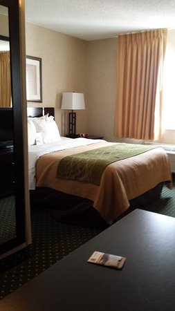 Comfort Inn & Suites North: nice bed