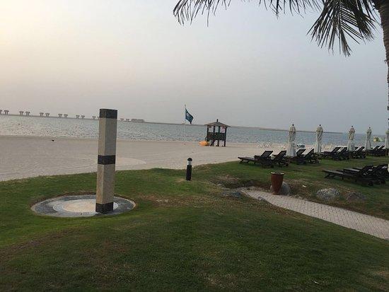 JA Palm Tree Court Photo