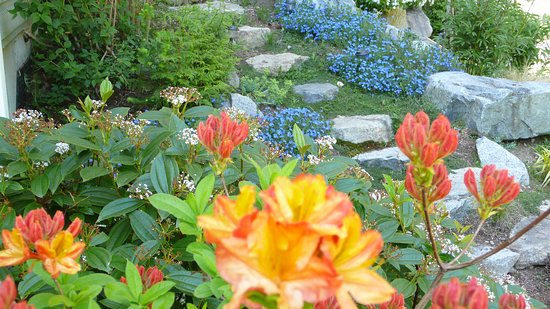 Roberts Creek, Canadá: Flower Rockery - Discovery Place Retreat