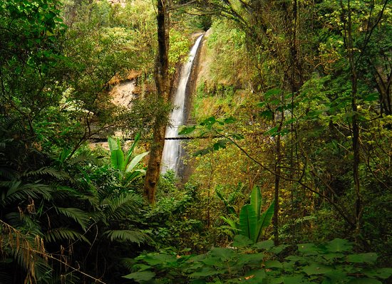Hotel Reserva Natural Atitlan: Waterfall / La catarata