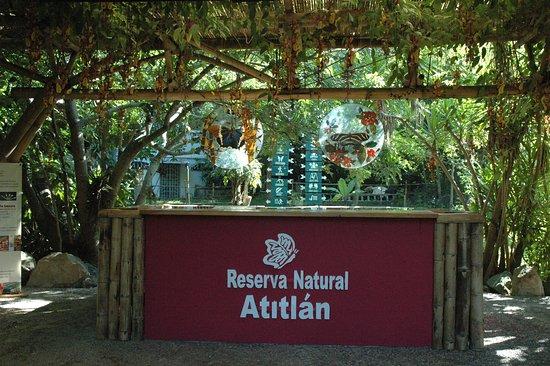 Hotel Reserva Natural Atitlán: Reception / Recepción