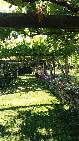 Vedra, Spanien: 20160801_185215_large.jpg