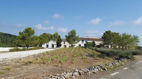 Enguera, Spania: 1469174719963_large.jpg