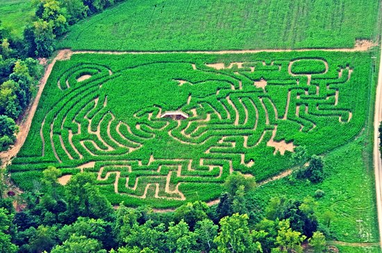 Coshocton, OH: 2016 Corn Maze: Space Exploration