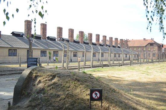 Auschwitz Tours Krakow Tripadvisor