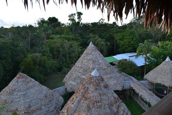 Amazon Rainforest Lodge: vista