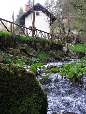 Il rio esce dalla montagna e porta a un vecchio mulino - Porta alla rovina otello ...