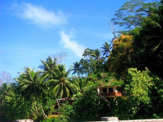 Bilde fra Kolonia