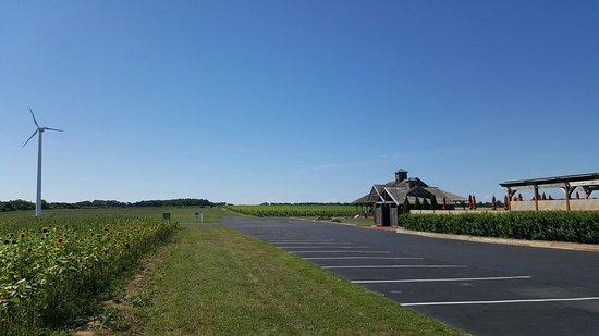 Peconic, نيويورك: Pindar Vineyards