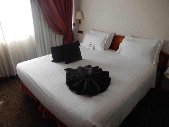 Tv Kast Bed.Tv Koelkast In Kast Verwerkt Picture Of Best Western Plus Hotel