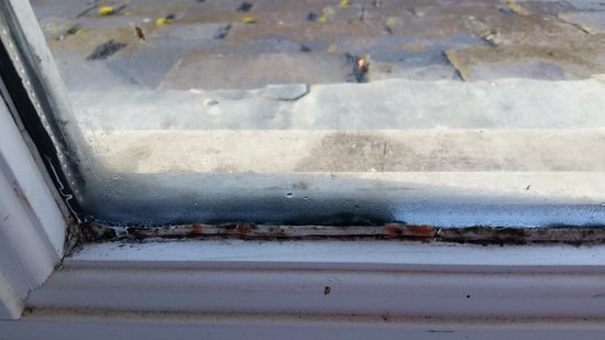 Lochearnhead, UK:  Filth and mould on interior window frame. Bedroom one.