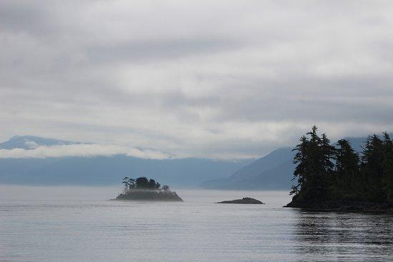 Alert Bay, Canadá: Beautiful fog