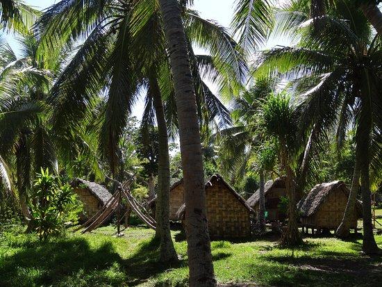 Aniwa Island, Vanuatu: Part of the local village.