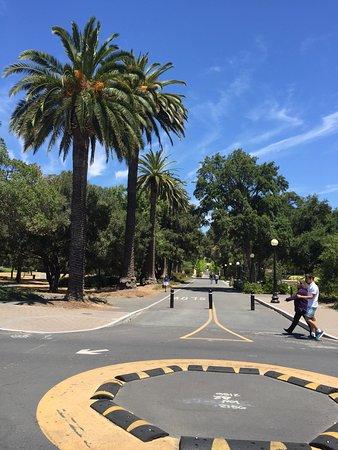 Palo Alto, Californië: Stanford - Vista do campus
