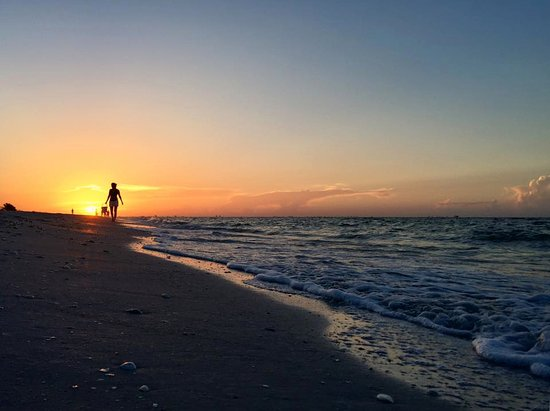 Ocean's Reach Condominiums: looking for shells as the sun comes up!