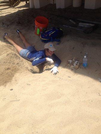 Sandy Beach: Under Tamboo restaurant
