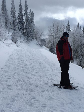 Steamboat Ski Resort: On one of the paths for snow shoeing at Steamboat Springs