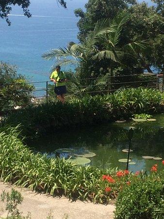 Giardini La Mortella: Belvedere Con Lago Di Ninfee