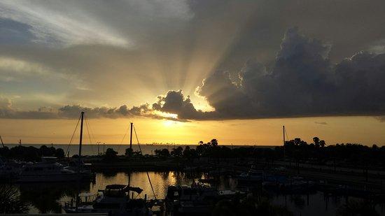 Ruskin, FL: 20160726_195853_large.jpg