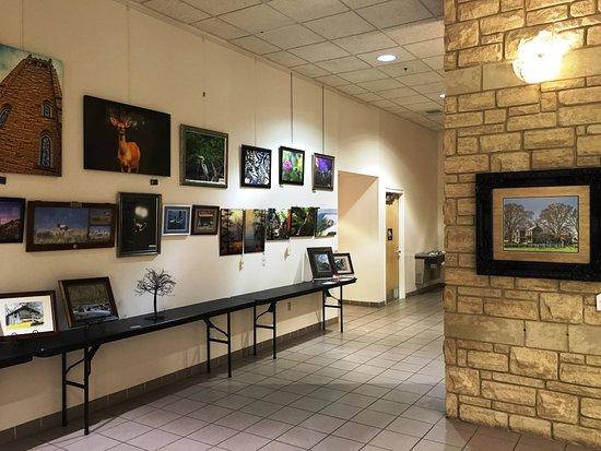 Mountain Arts Center : Local art exhibit