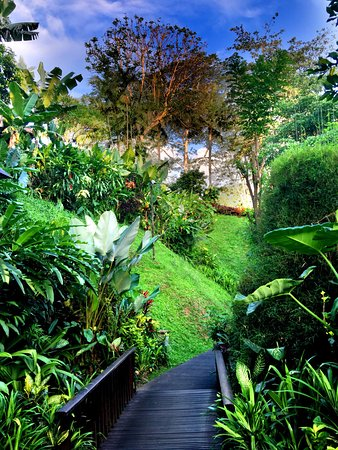 Maya Ubud Resort & Spa: Great resort