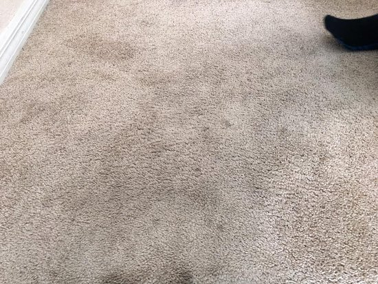 ‪ريجال بالمز ريزورت آند سبا: All room carpets are very dirty. They need to renovate to hardwood floors or something better.‬