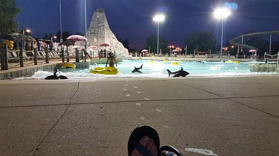 Eureka, MO: This was during our eveng swim in the Wave pool. The blow up sharks were alot of fun to play wit