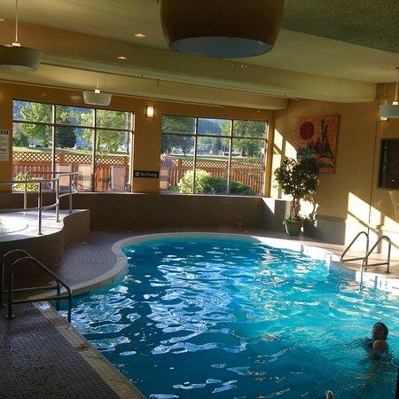 เฟอร์นีย์, แคนาดา: Good size indoor pool and hot tub 2